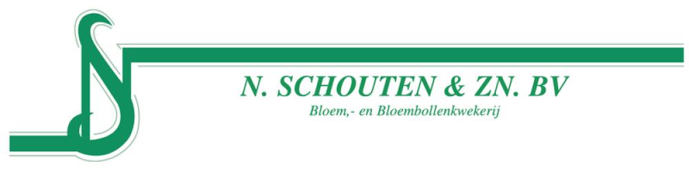 loog-oud-nschouten-schouten-tulips
